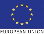EU_flag_RGB.jpg
