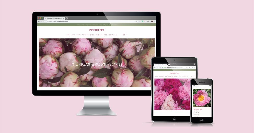 Current 120 web design and website development for Traverse City, MI Inevitable Farm.