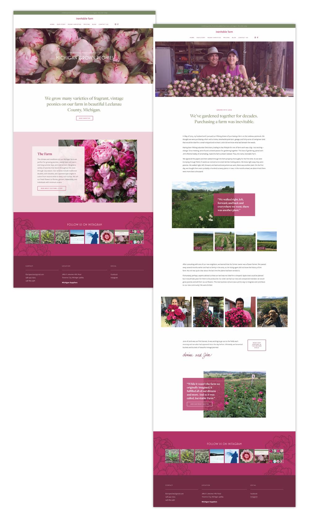 Traverse City, MI peony farm, Inevitable Farm, had its website designed by local web designer, Current 120.