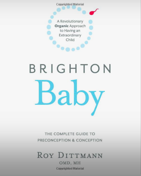 Brighton Baby A Revolutionary Organic Approach to Having an Extraordinary Childby Roy Dittmann -