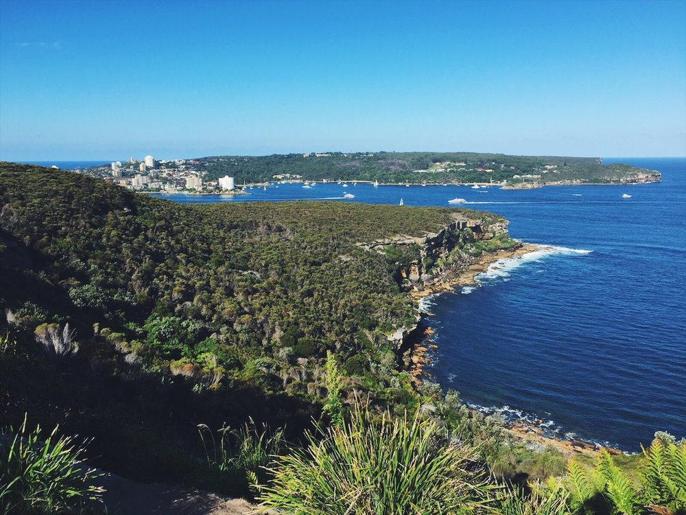 Views from the Manly to Spit Bridge hike.