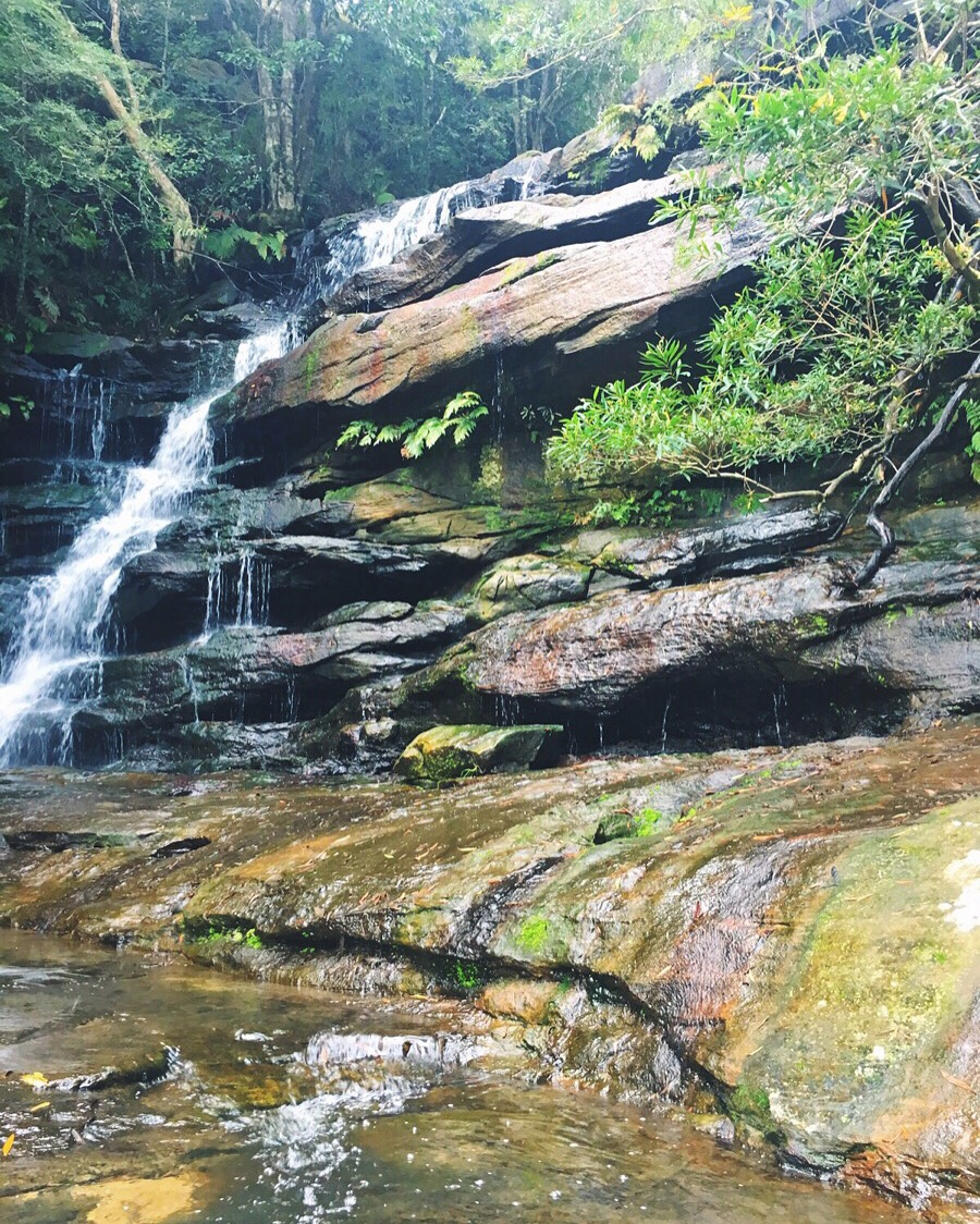 Somersby Falls, Central Coast.