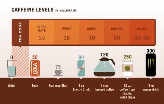 caffeine levels.jpg