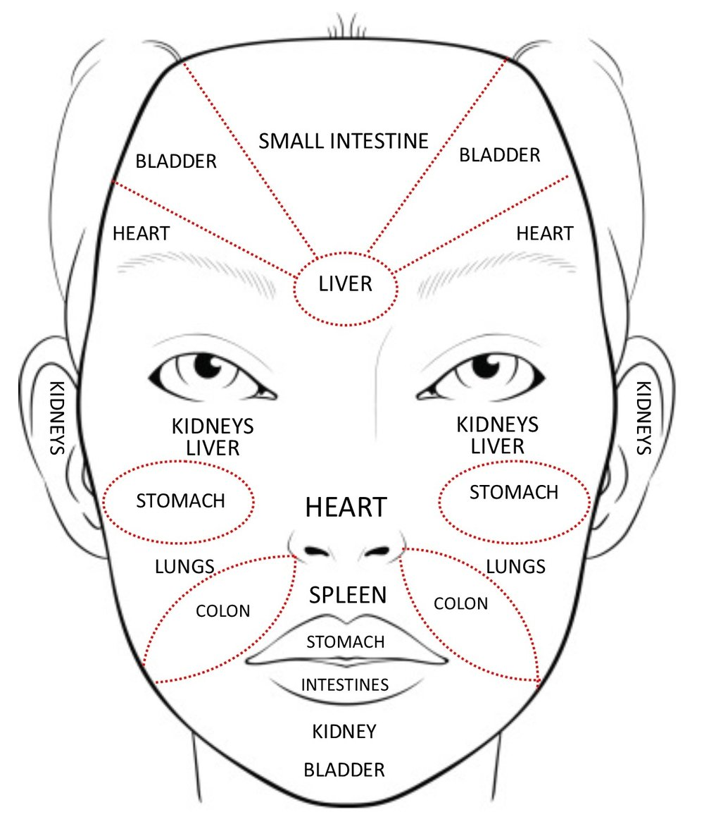 In Chinese medicine, face mapping is used to decode messages of distress from other areas in our body. The skin is one of the largest organs in our bodies, so when it starts acting up, this is an indication of something going on inside the body that is out of balance that we may be unaware of.  Image courtesy of  Acupuncture & Beauty Centre