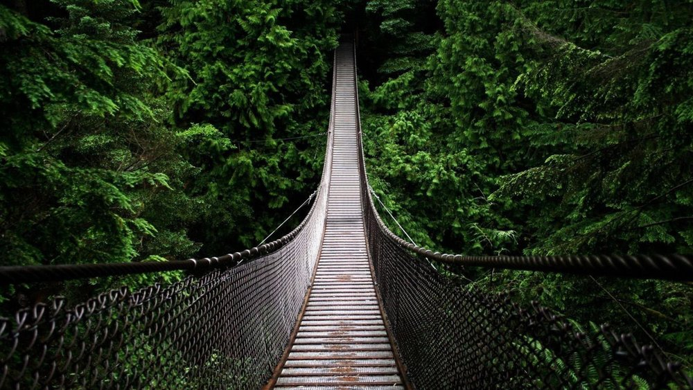 Lynn Canyon suspension bridge.