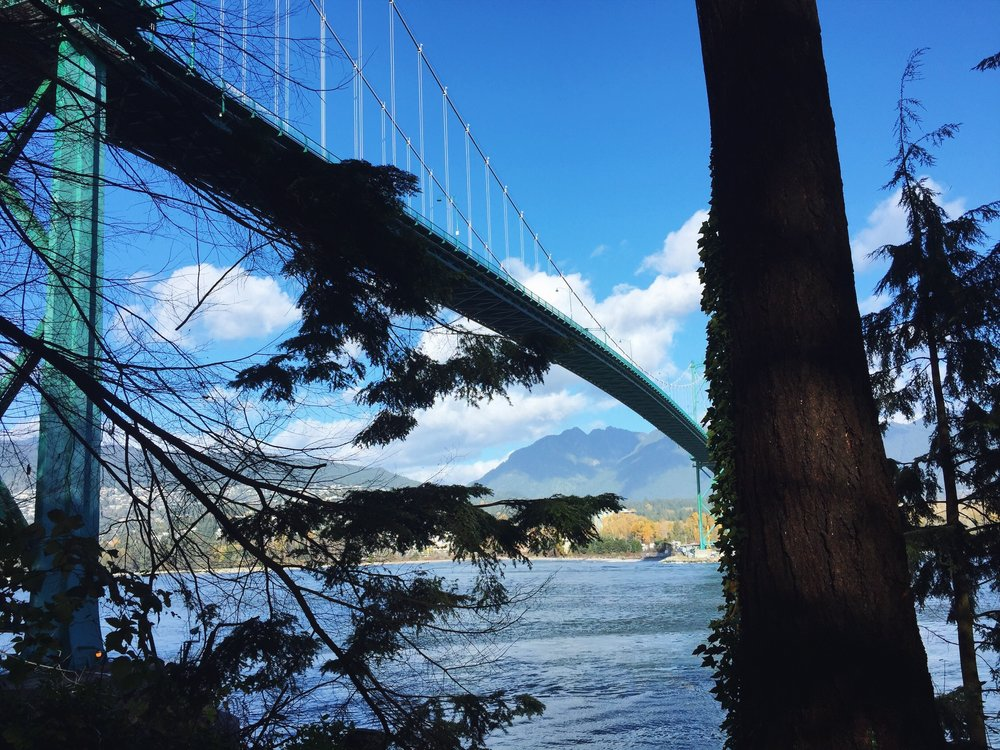 Views from beneath the Lions Gate bridge (a path that connects you to the seawall)