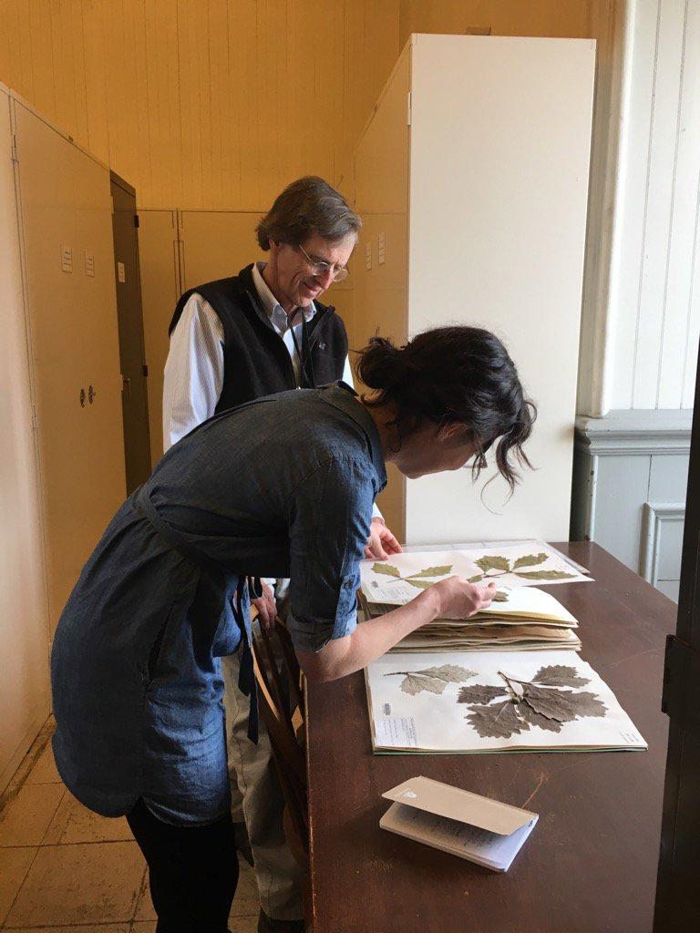 herbarium_photo.jpg