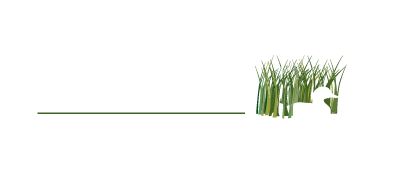 Upper Miss Wildlife Artistry