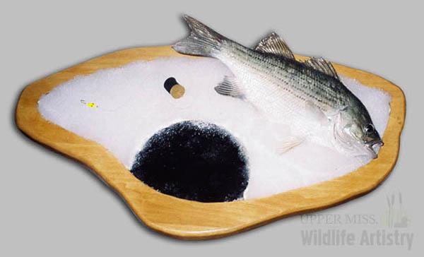 bases_icefishing.jpg