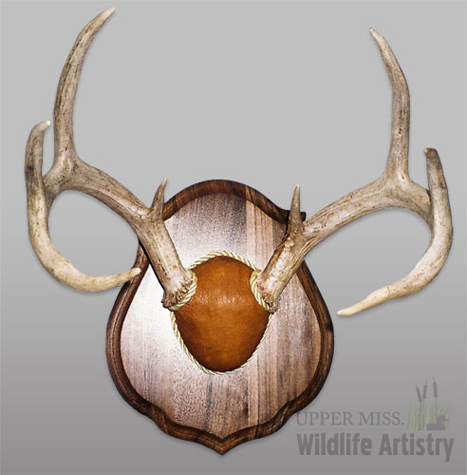 antlers_hardwood_panel.jpg