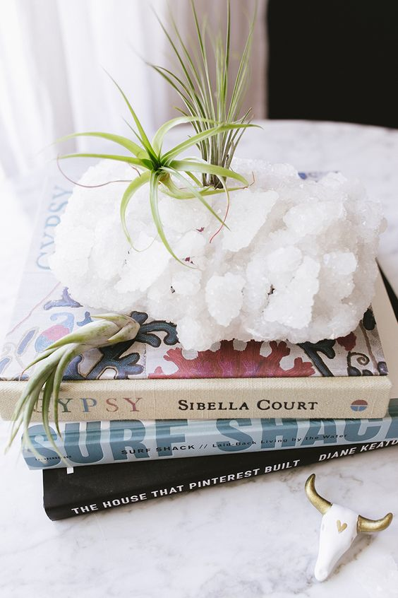 Geodes - Crystals are the hottest trend right now - and plenty of geode clusters are made into tealights! Why not ditch the candle, and go straight for the air plant!