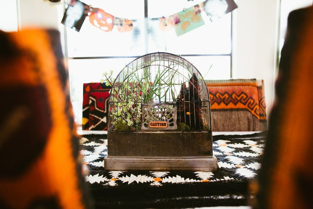 "Birdcages - Whether you have a few crows you snagged at your local craft store or if you want to create a vintage ""graveyard"" look, vintage birdcages do just the trick! Add a tiny caution sign and you're in business!"