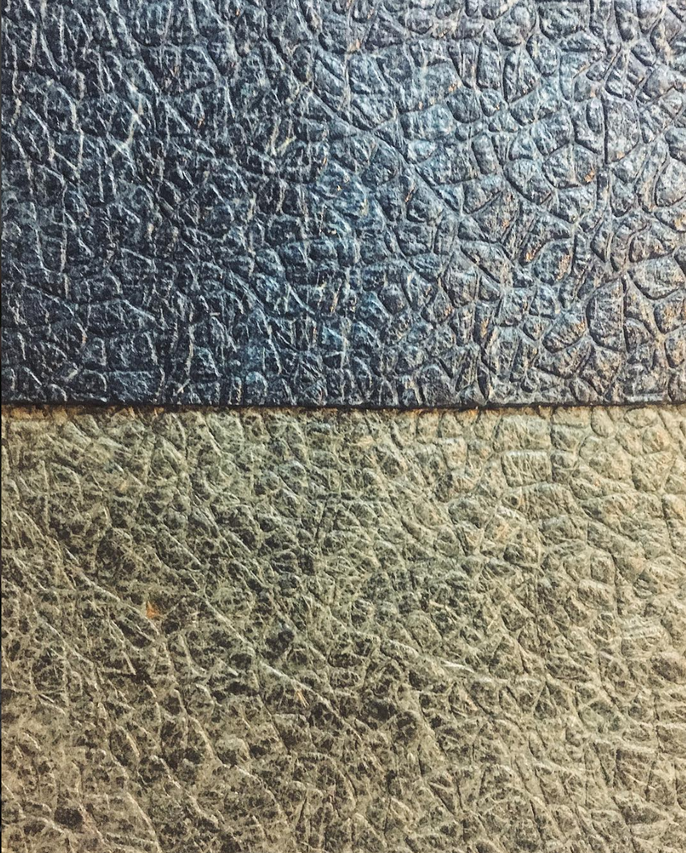 Agricultural Waste Leather