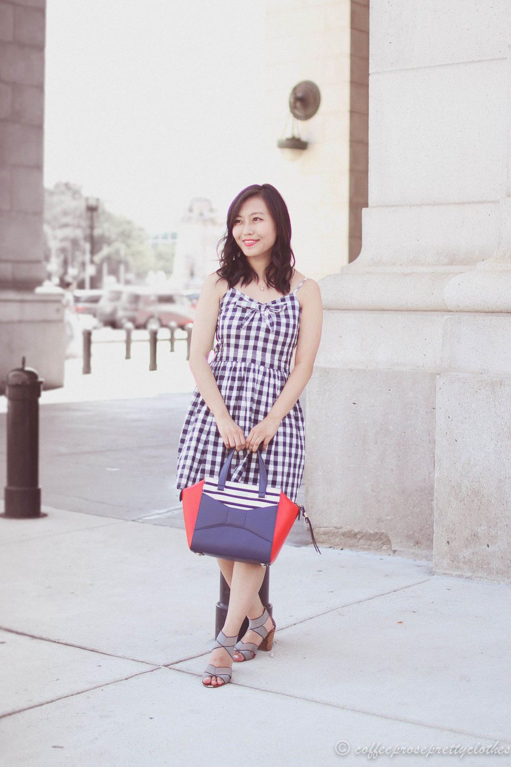 Gingham Dress and Beau Bag