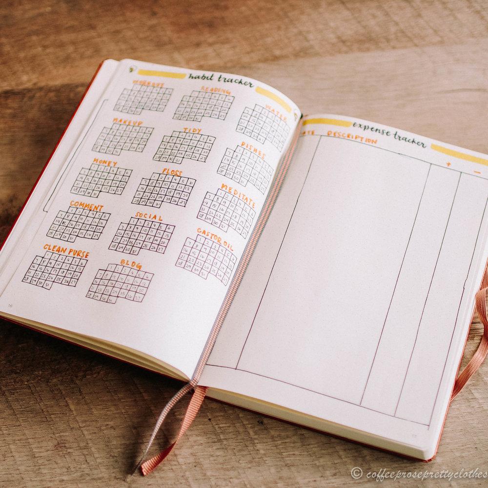 January 2019 bullet journal setup Lightbulb theme Habit Tracker and Expense tracker
