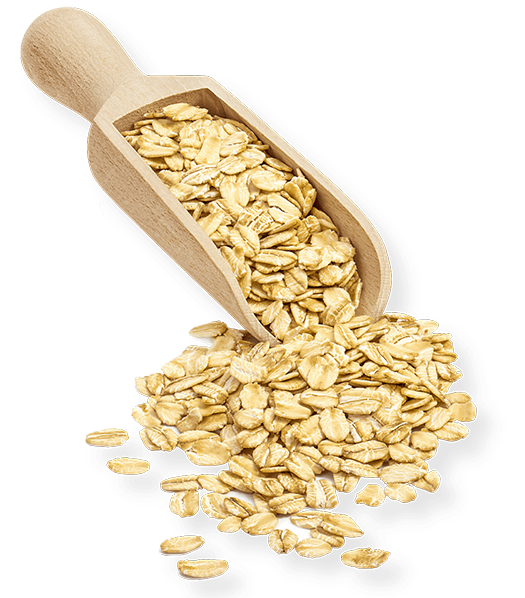 Scoop of oats@2x.png