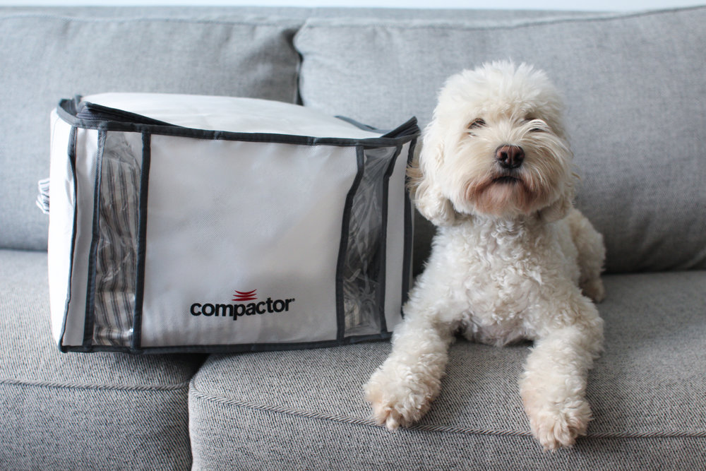 Compactor Bag-9484.jpg
