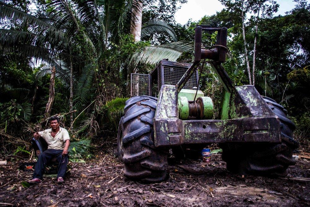 Exploitation forestière à petite échelle à 1h de Paohyan, à l'intérieur de la jungle.