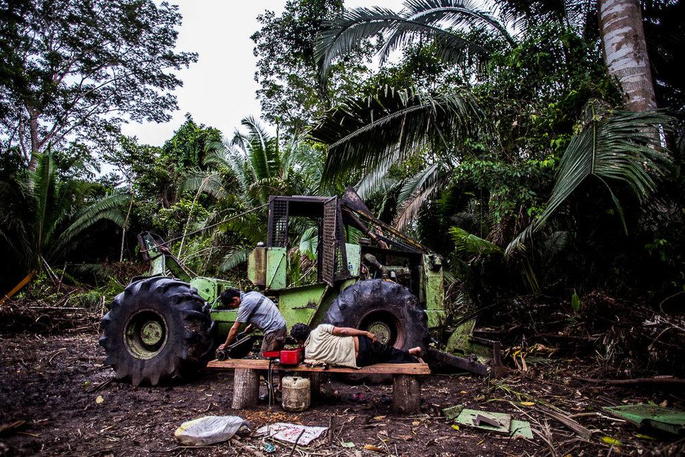 Les bûcherons survivent dans des conditions difficiles, avec des machines vielles et lourdes qui nécessitent constamment des réparations.