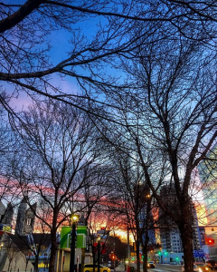 4) Cultivation of the Arts - In addition to having an award winning Art Gallery, Edmonton is also a community full of creatives. There's even an instagram group tag, #yeggers, devoted to documenting Edmonton photographers and artists!Image via @jensklan