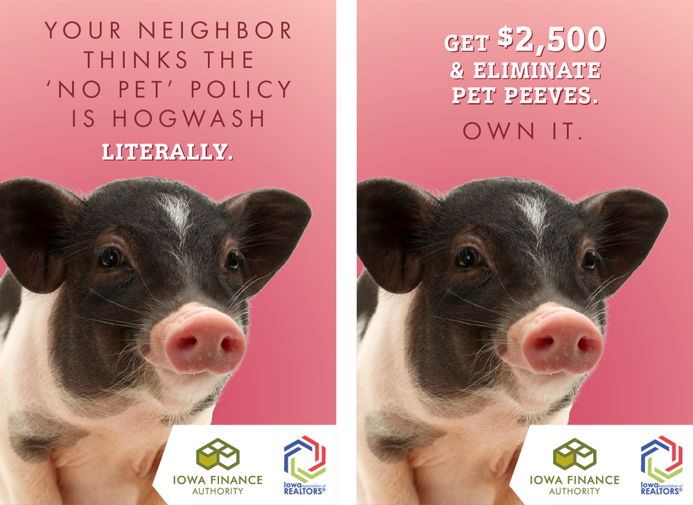 adsForWeb_pig.png