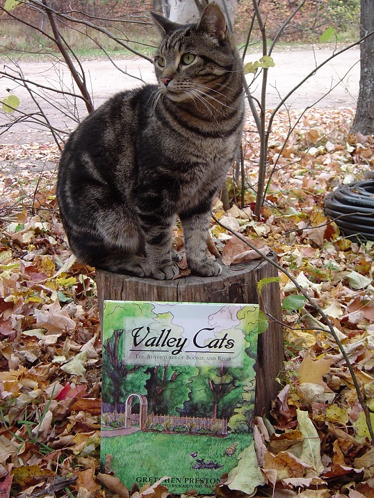 The first in Preston's  Valley Cats  series. Also, a cat.