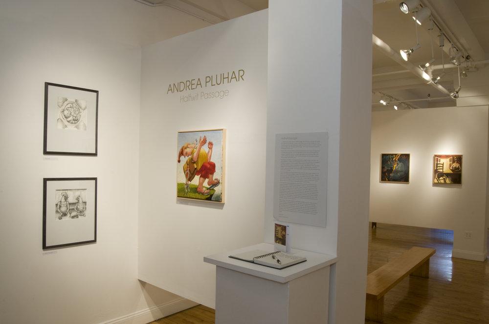 Halfwit Passage installation, Atlantic Gallery, NYC, 2009
