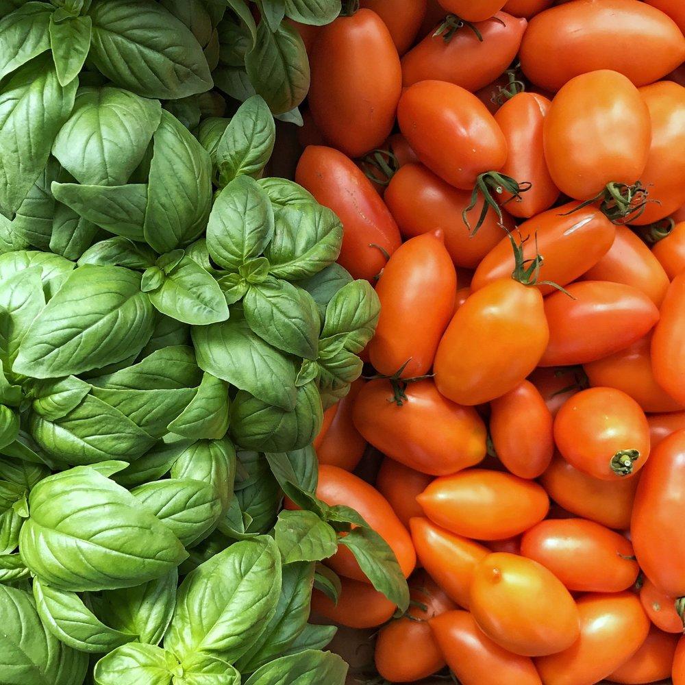 basil & orange roma tomatoes