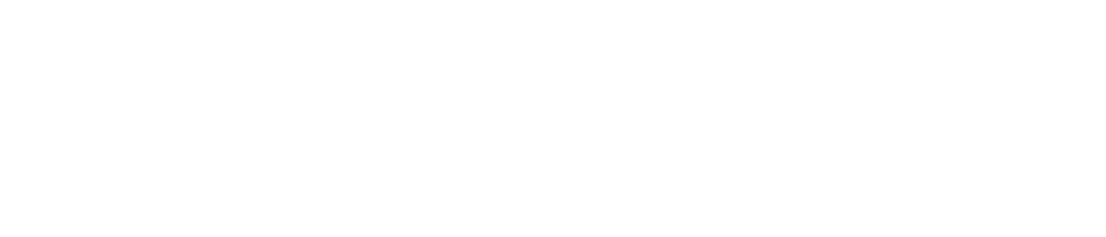 NGS_2019CONNECT-Logo-WHITE.png