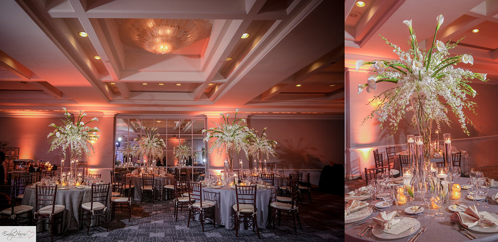 Call Signature Events to check availability and schedule a meeting. Tel: 1(786)571-4467 Email: info@signatureeventsbyabby.com.