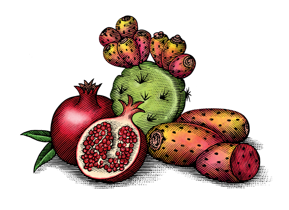 Cactus Pear & Pomegranate