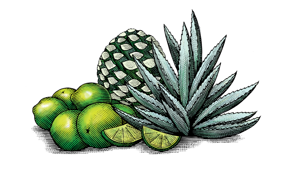 Mexican Agave & Lime