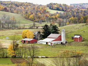Ohio's 7th -