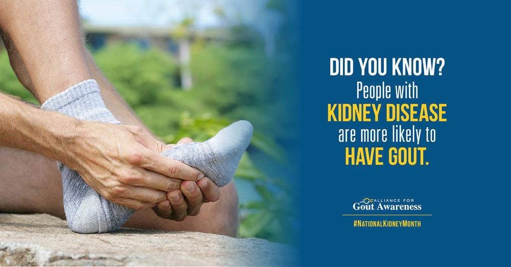 AGA_National Kidney Month_A.jpg