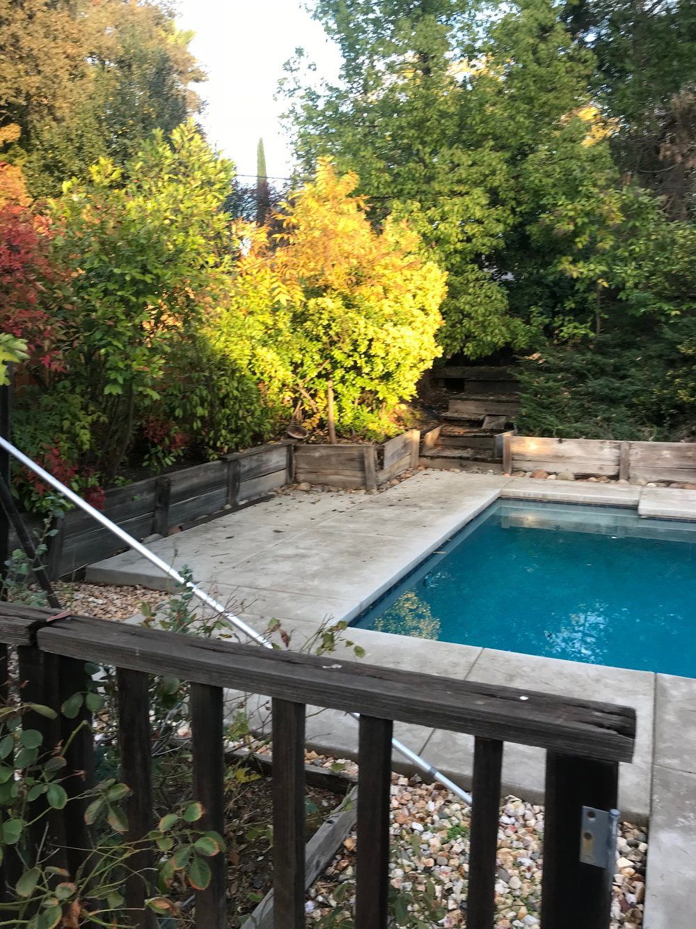 landscaping-citrus-heights1.jpeg