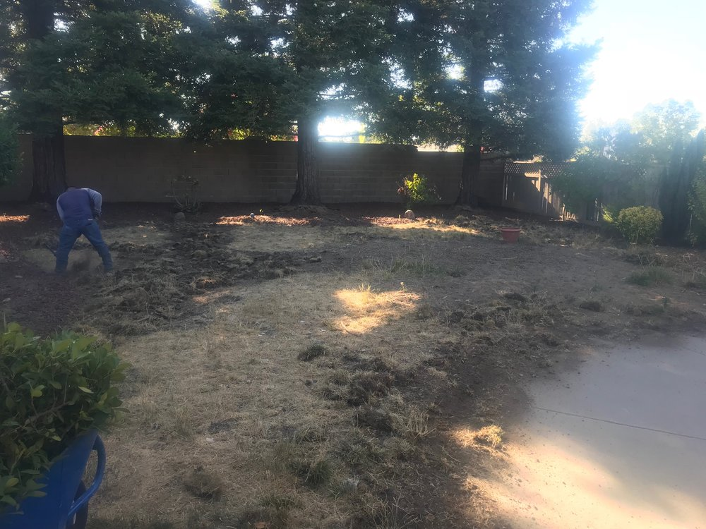 landscaping-suncity1.jpeg