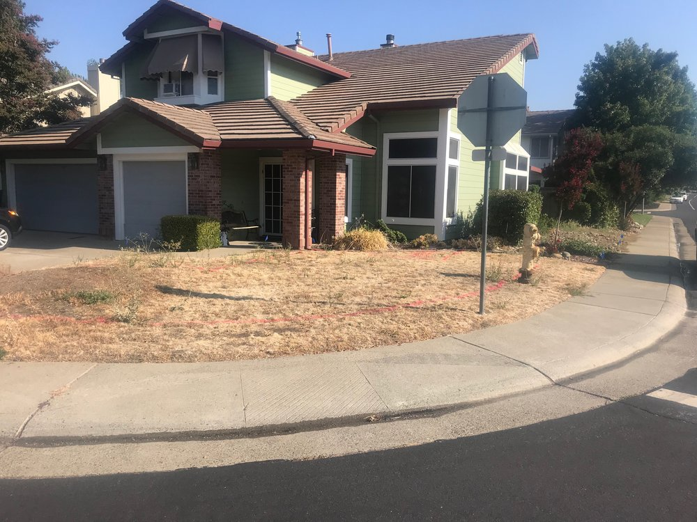 landscaping-whitney-ranch1.jpeg