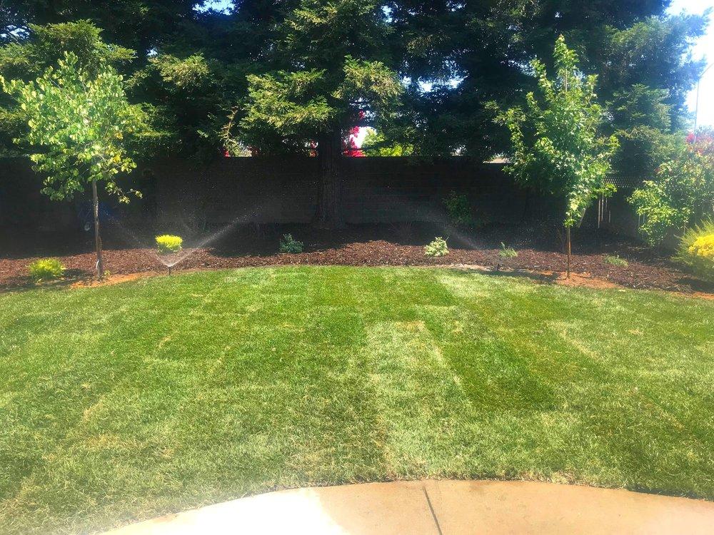 landscaping-suncity2.jpeg