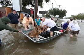 houston flood 07.jpg