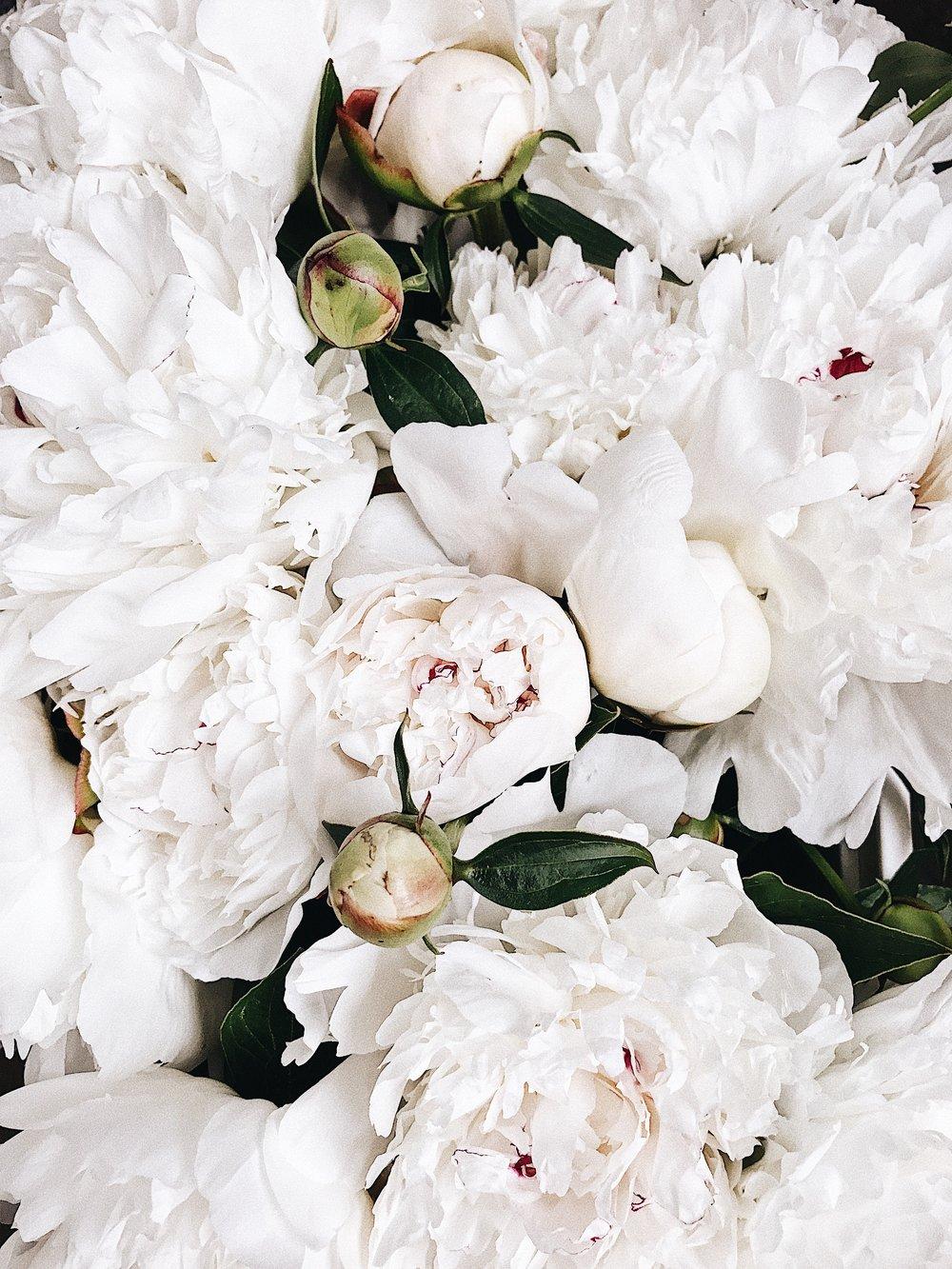 #whitegreenfloral