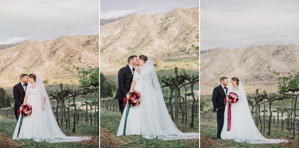 Orfila Vinery Wedding Temecula Wedding Photographer 30.jpg