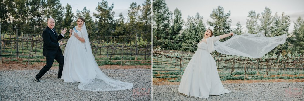 Orfila Vinery Wedding Temecula Wedding Photographer 25.jpg