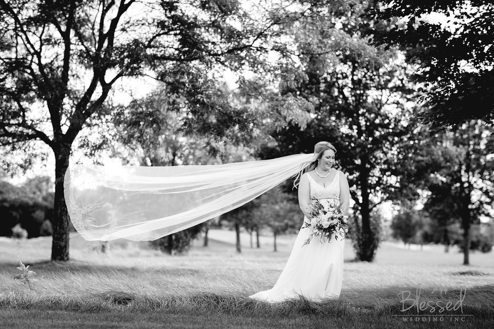 Destination Wedding Photography Minnesota By Blessed Wedding Photographers-38.jpg