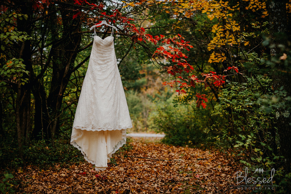 Destination Wedding Photography Minnesota By Blessed Wedding Photographers-1.jpg