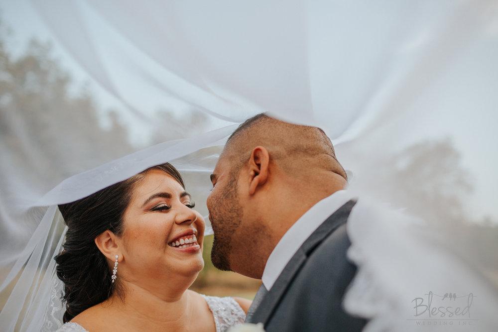 BlessedWeddingPhotography_Wedgewood Wedding Photography (28 of 89).jpg