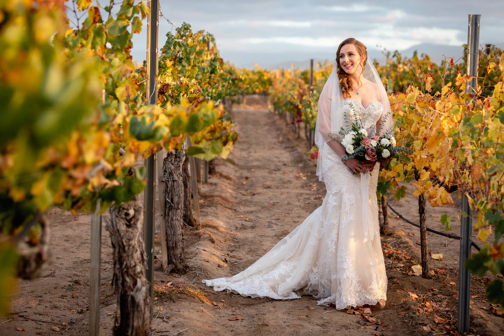 Danielle & James Wedding Portraits Copyright Blessed Weddings-305.jpg