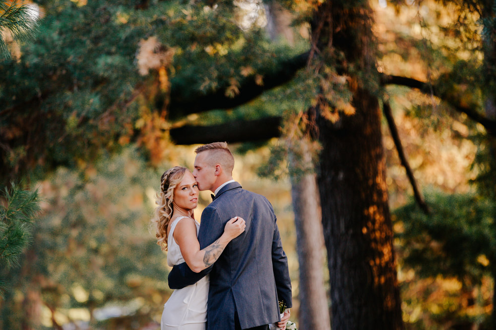 Holly  Max Como Zoo Wedding Copyright Blessed Weddings-538.jpg