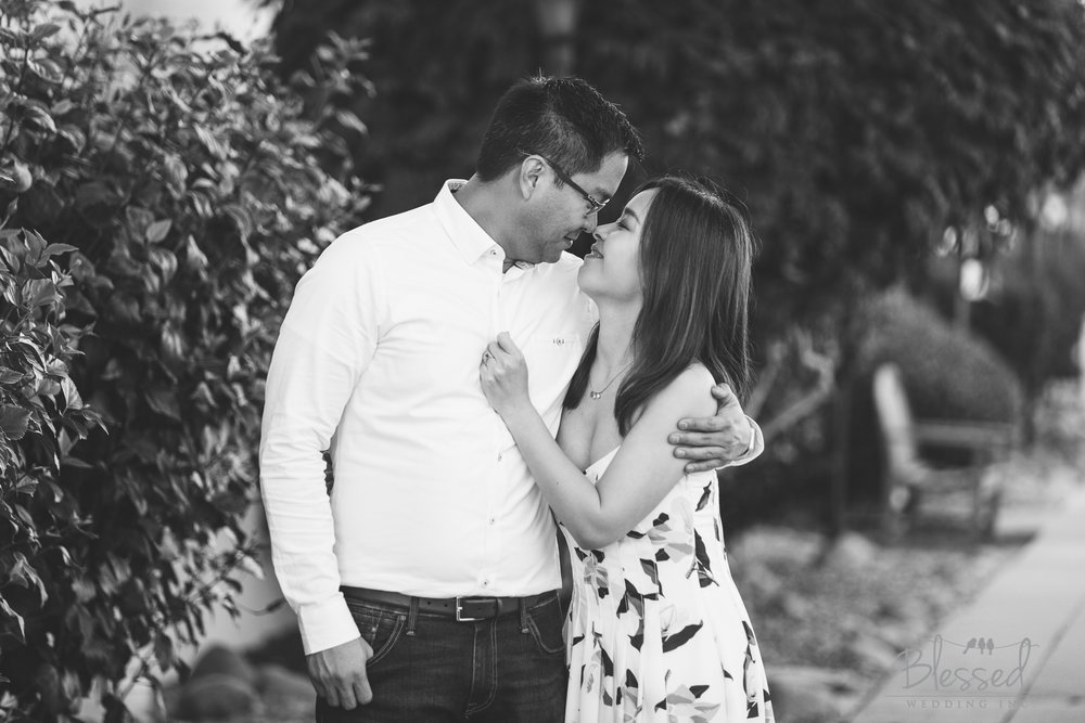 BlessedWeddingPhotography_CuvierParkLaJollaEngagement (21 of 33).jpg