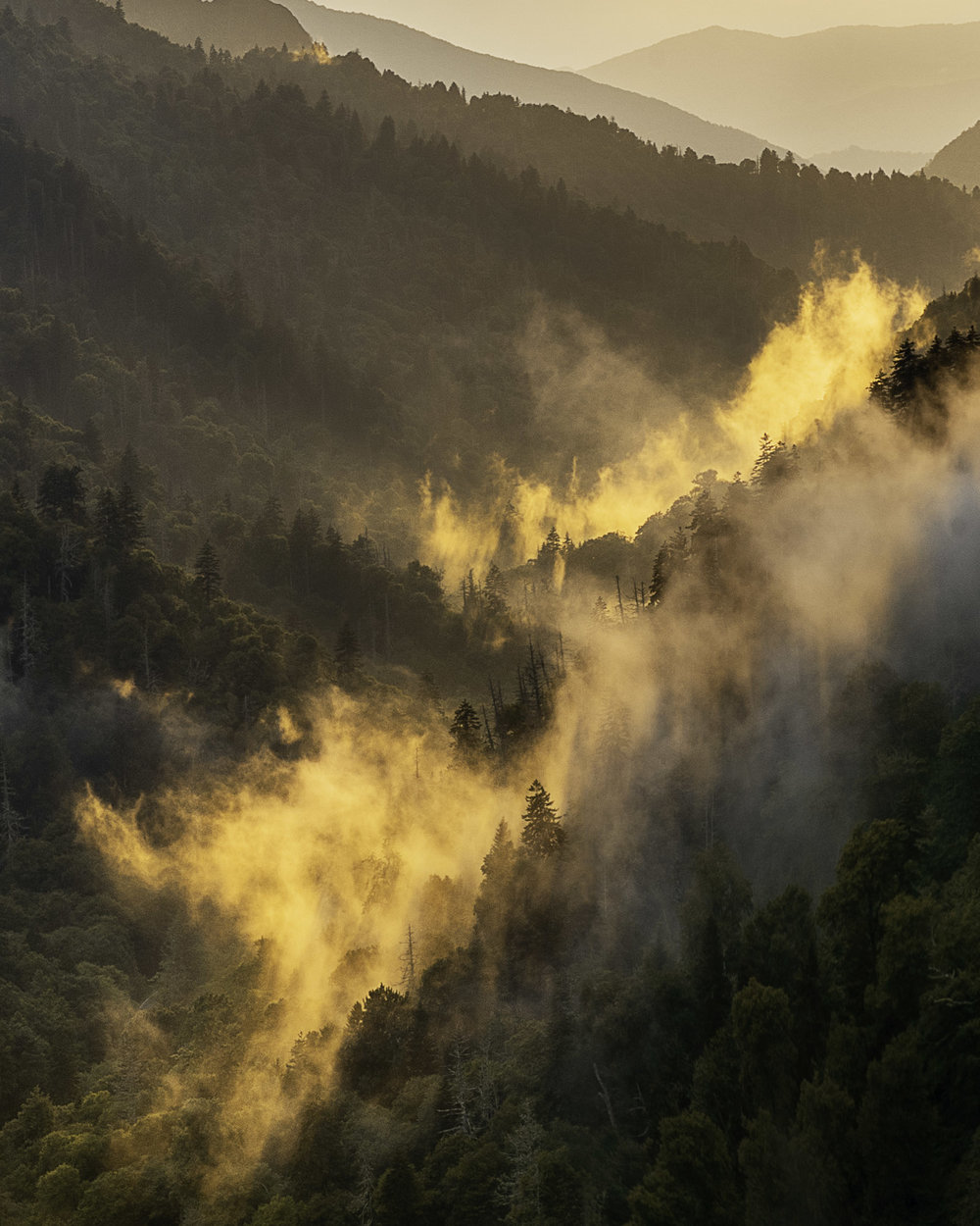 Fog lighting up at sunset in the great smoky mountains