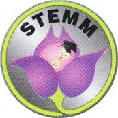 STEMM | Supporting Teenagers with Education, Mothering and Mentoring.